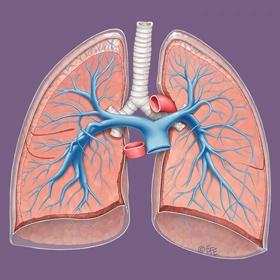 Pulmonary artery endarterectomy