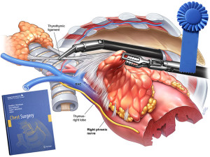 """Read more about the article Chest Surgery Atlas receives """"Award of Excellence"""""""